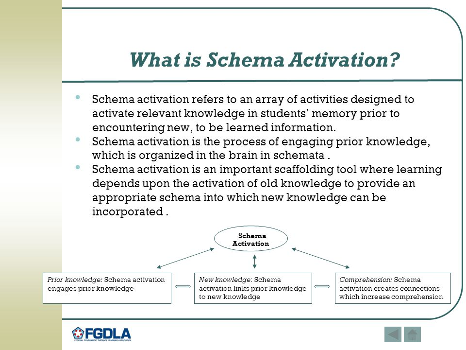 What is Schema Activation.