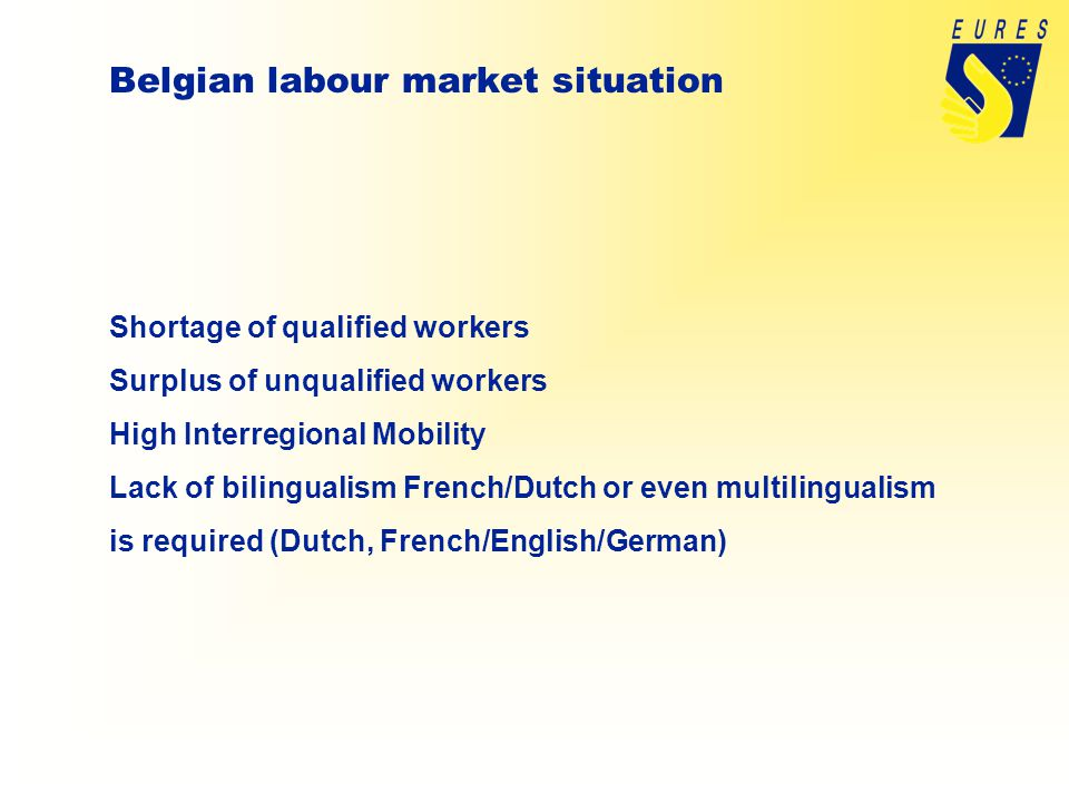 Shortage of qualified workers Surplus of unqualified workers High Interregional Mobility Lack of bilingualism French/Dutch or even multilingualism is required (Dutch, French/English/German)