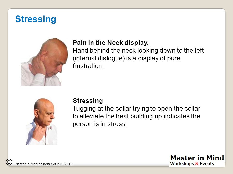 © Master In Mind on behalf of ISIO 2013 Pain in the Neck display.