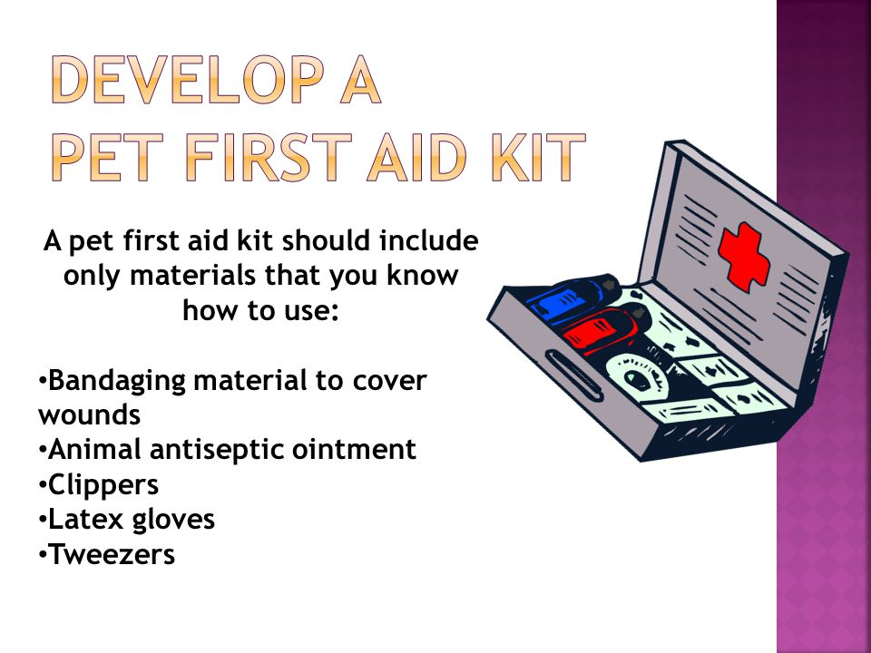 A pet first aid kit should include only materials that you know how to use: Bandaging material to cover wounds Animal antiseptic ointment Clippers Latex gloves Tweezers