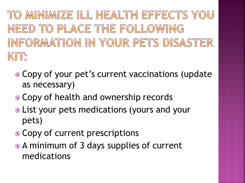 You may wish to have a contact person that is out of your area; in case your pet is lost of runs away during a disaster.