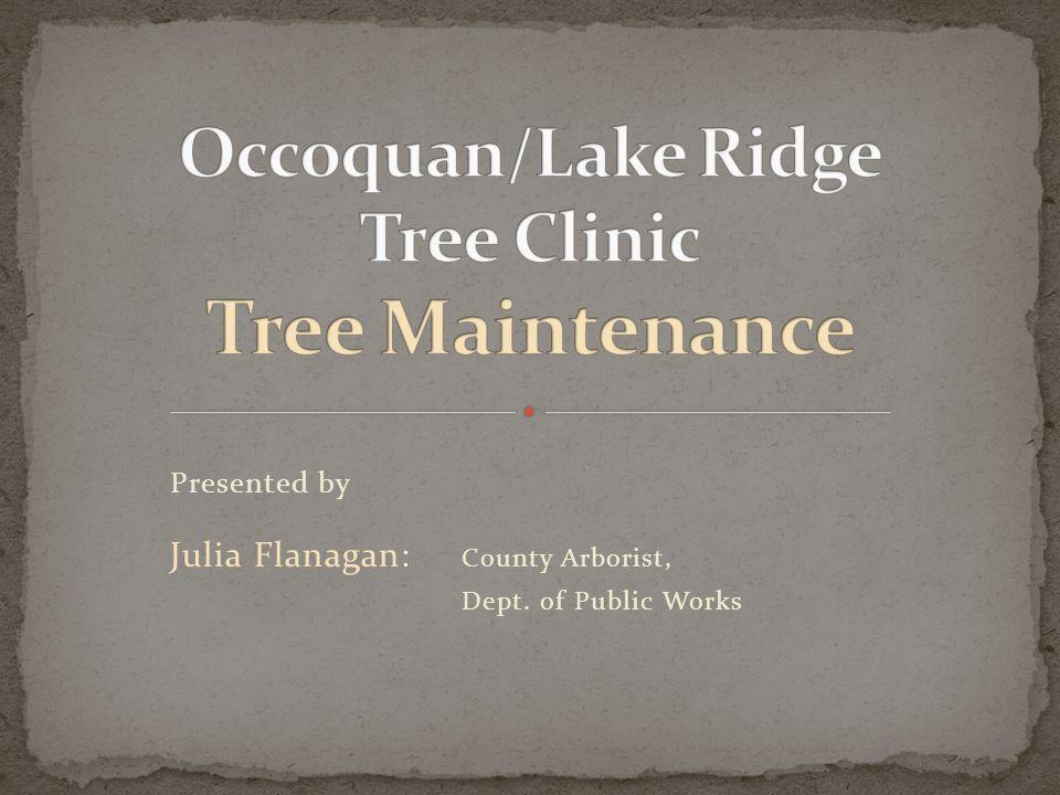 Presented by Julia Flanagan: County Arborist, Dept. of Public Works