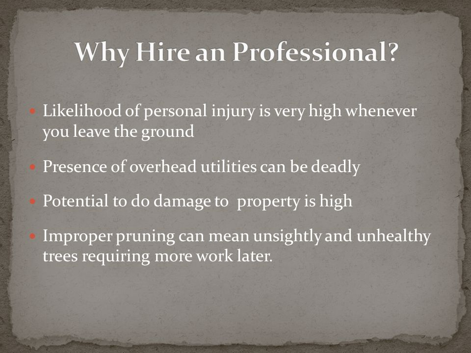 Likelihood of personal injury is very high whenever you leave the ground Presence of overhead utilities can be deadly Potential to do damage to property is high Improper pruning can mean unsightly and unhealthy trees requiring more work later.