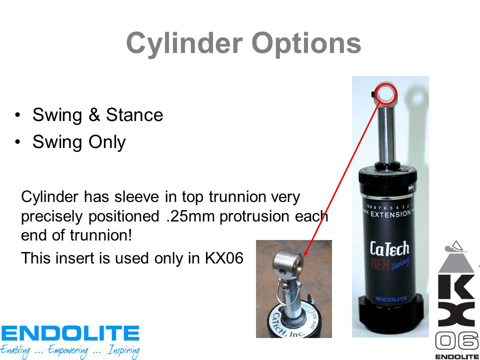 Cylinder Options Swing & Stance Swing Only Cylinder has sleeve in top trunnion very precisely positioned.25mm protrusion each end of trunnion! This in
