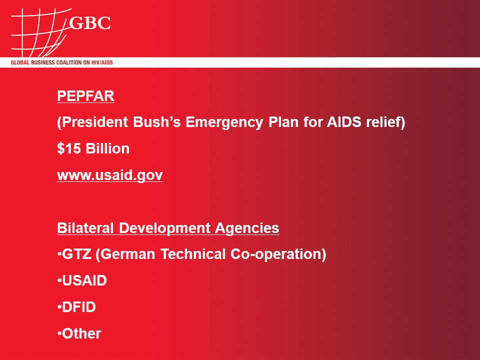 PEPFAR (President Bush's Emergency Plan for AIDS relief) $15 Billion www.usaid.gov Bilateral Development Agencies GTZ (German Technical Co-operation) USAID DFID Other