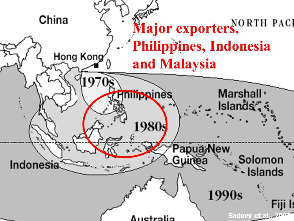 Sadovy et al., 2003a Major exporters, Philippines, Indonesia and Malaysia
