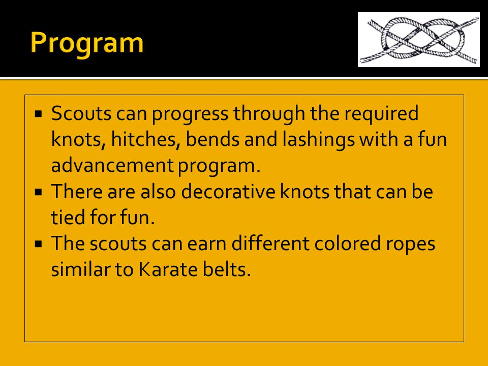  Scouts can progress through the required knots, hitches, bends and lashings with a fun advancement program.