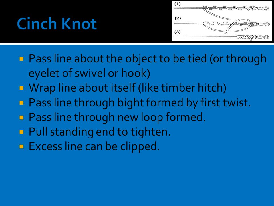  Pass line about the object to be tied (or through eyelet of swivel or hook)  Wrap line about itself (like timber hitch)  Pass line through bight formed by first twist.