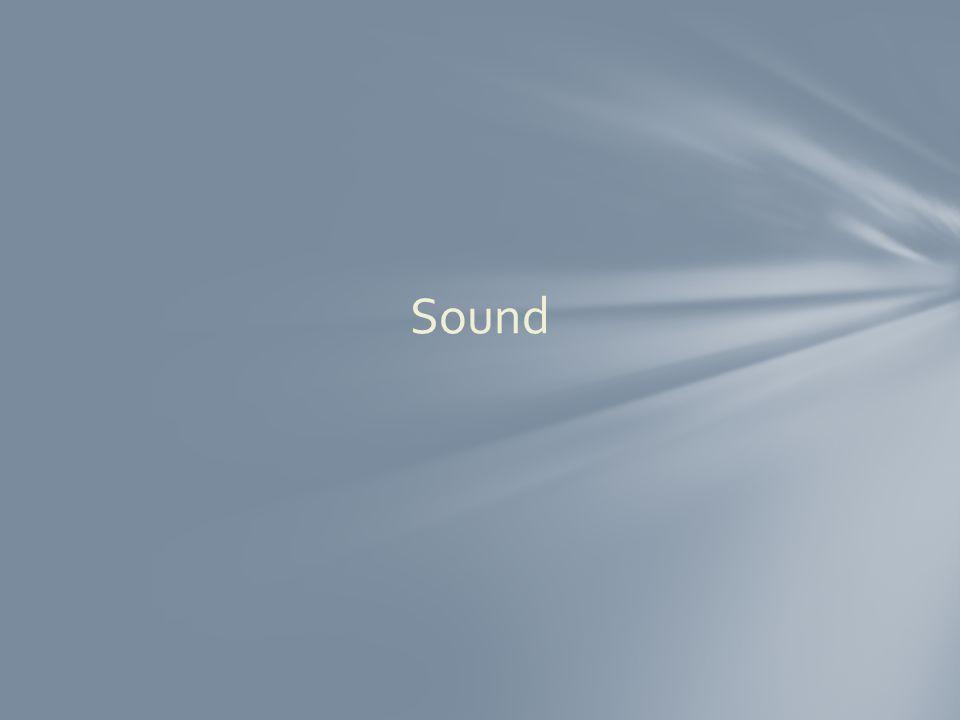 B. eardrum $300 Answer Miscellaneous 2