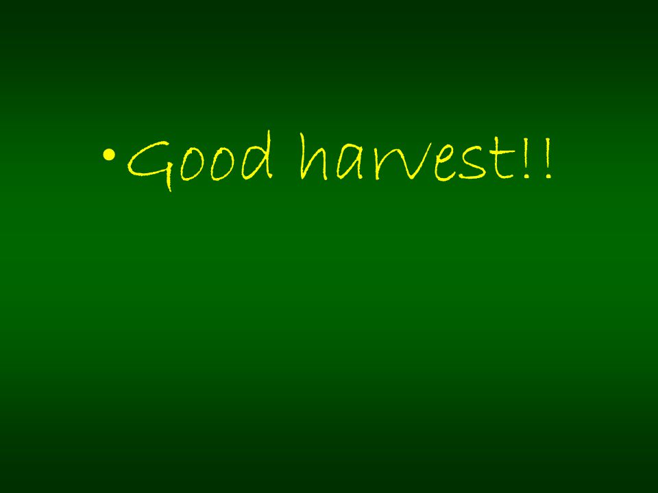 Good harvest!!