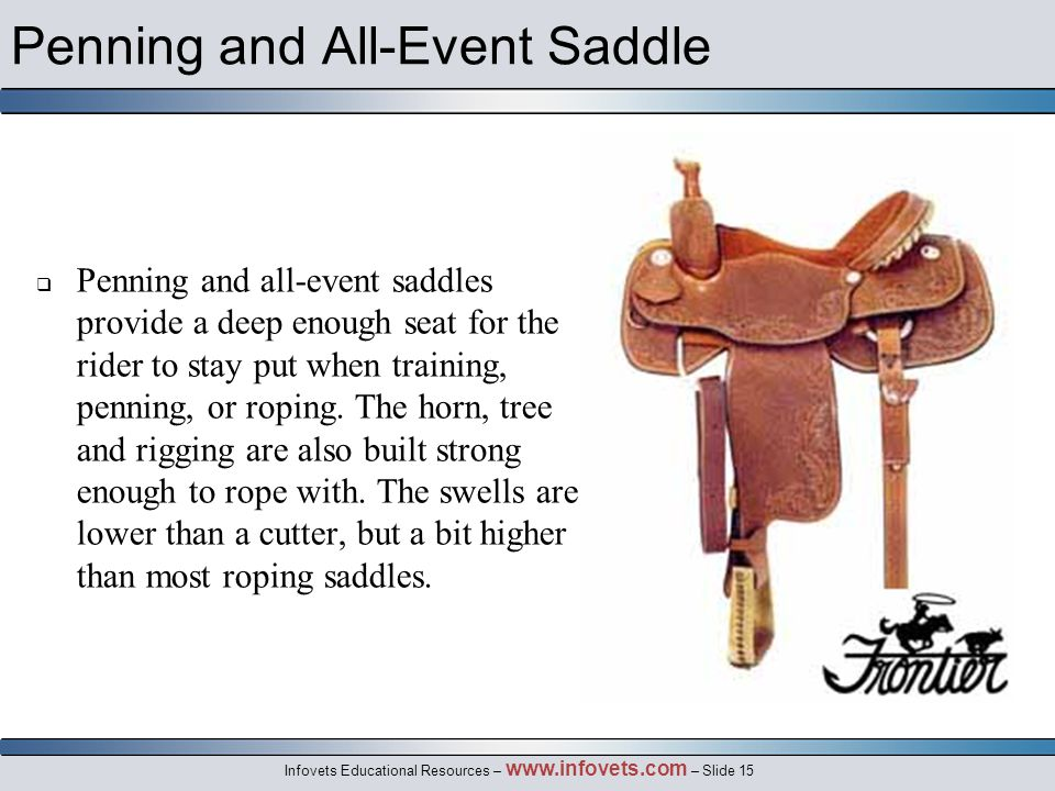 Infovets Educational Resources – www.infovets.com – Slide 15 Penning and All-Event Saddle  Penning and all-event saddles provide a deep enough seat for the rider to stay put when training, penning, or roping.