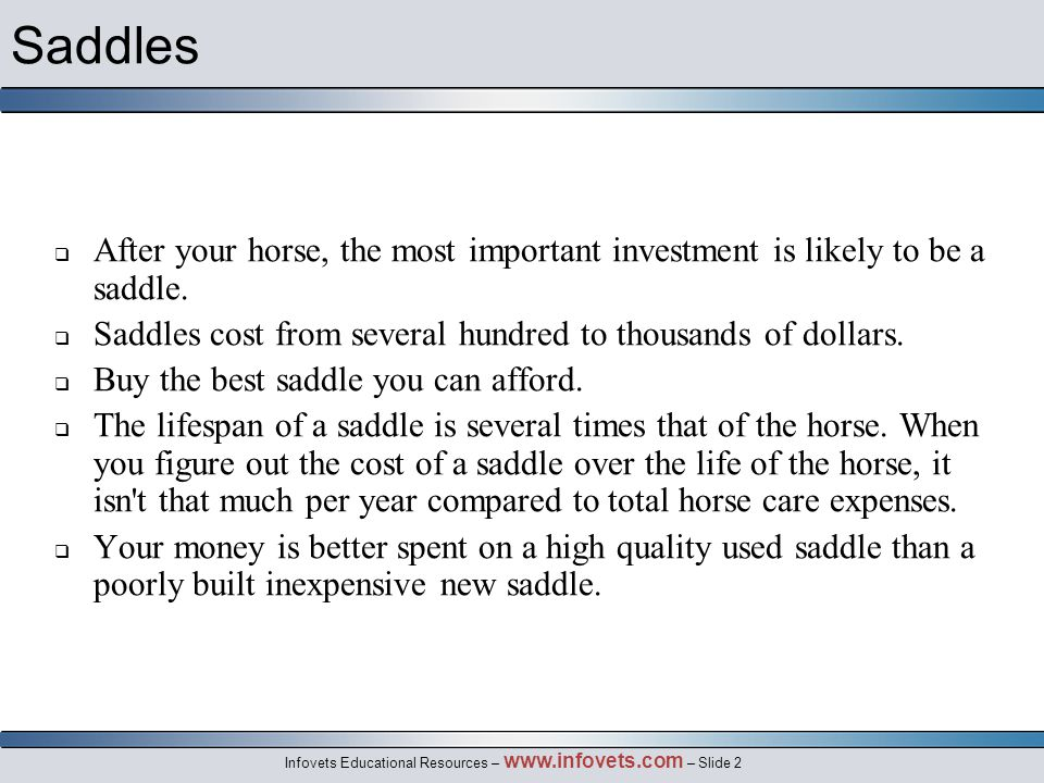 Infovets Educational Resources – www.infovets.com – Slide 13 The Western Saddle  Advantages:  Versatile, rugged and durable  Offers more security for a beginner  Disadvantages:  It is large and heavy  The thickness of the leather under the leg, knee and seat isolate the horse from the rider and can limit communication