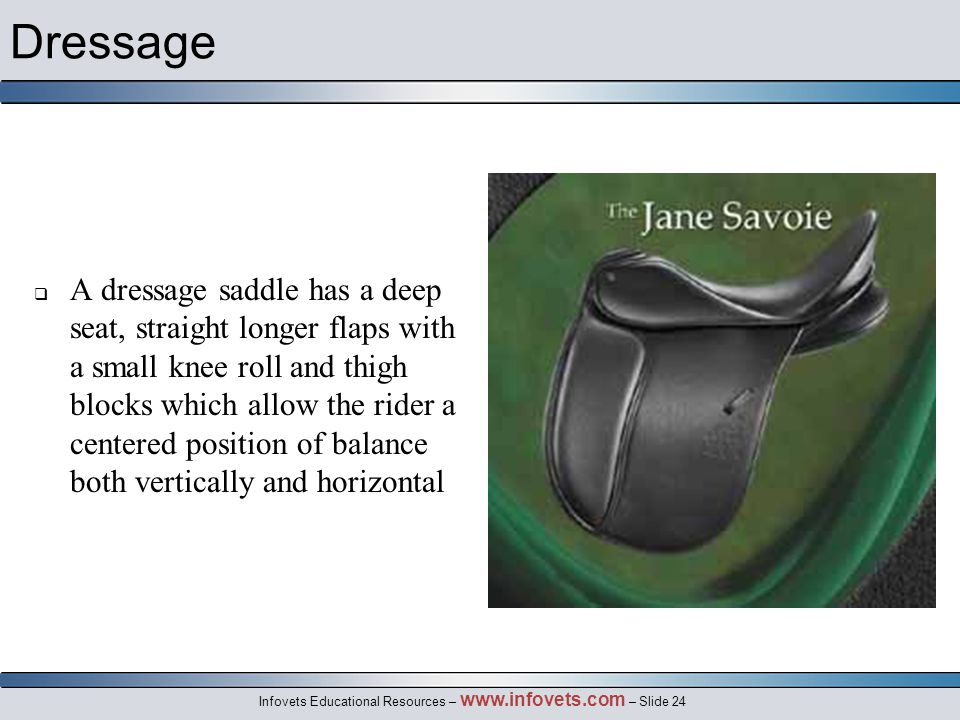 Infovets Educational Resources – www.infovets.com – Slide 24 Dressage  A dressage saddle has a deep seat, straight longer flaps with a small knee roll and thigh blocks which allow the rider a centered position of balance both vertically and horizontal