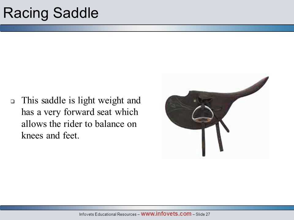 Infovets Educational Resources – www.infovets.com – Slide 27 Racing Saddle  This saddle is light weight and has a very forward seat which allows the rider to balance on knees and feet.