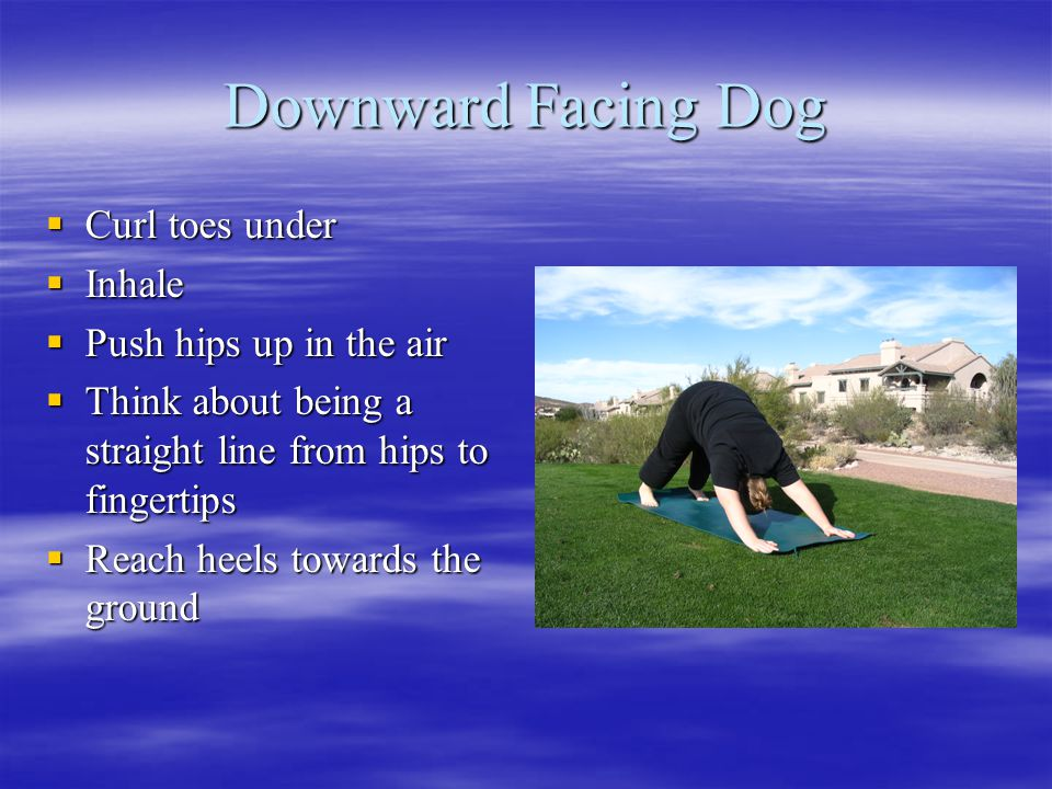 Downward Facing Dog  Curl toes under  Inhale  Push hips up in the air  Think about being a straight line from hips to fingertips  Reach heels towards the ground