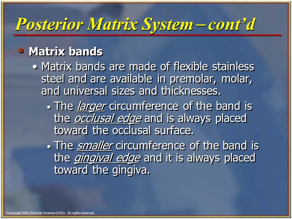 Copyright 2003, Elsevier Science (USA). All rights reserved. Fig. 49-2 Types of matrix bands.