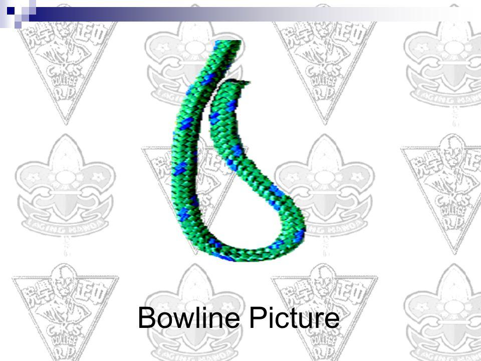 Bowline Picture