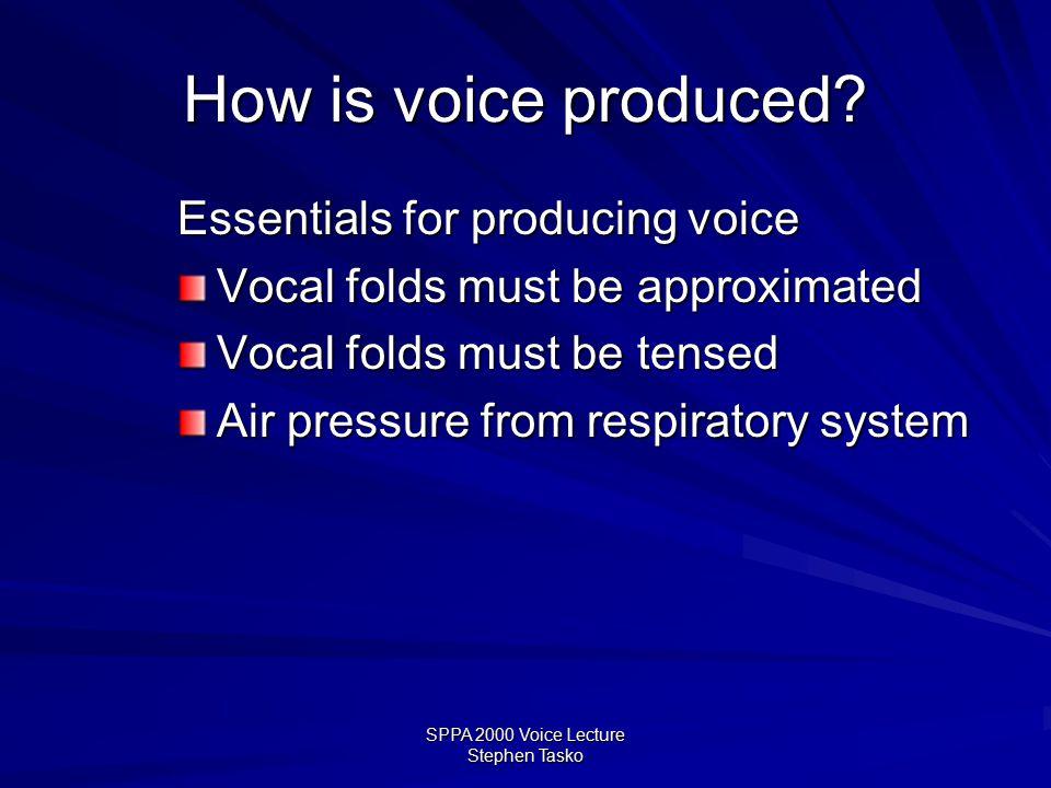 SPPA 2000 Voice Lecture Stephen Tasko