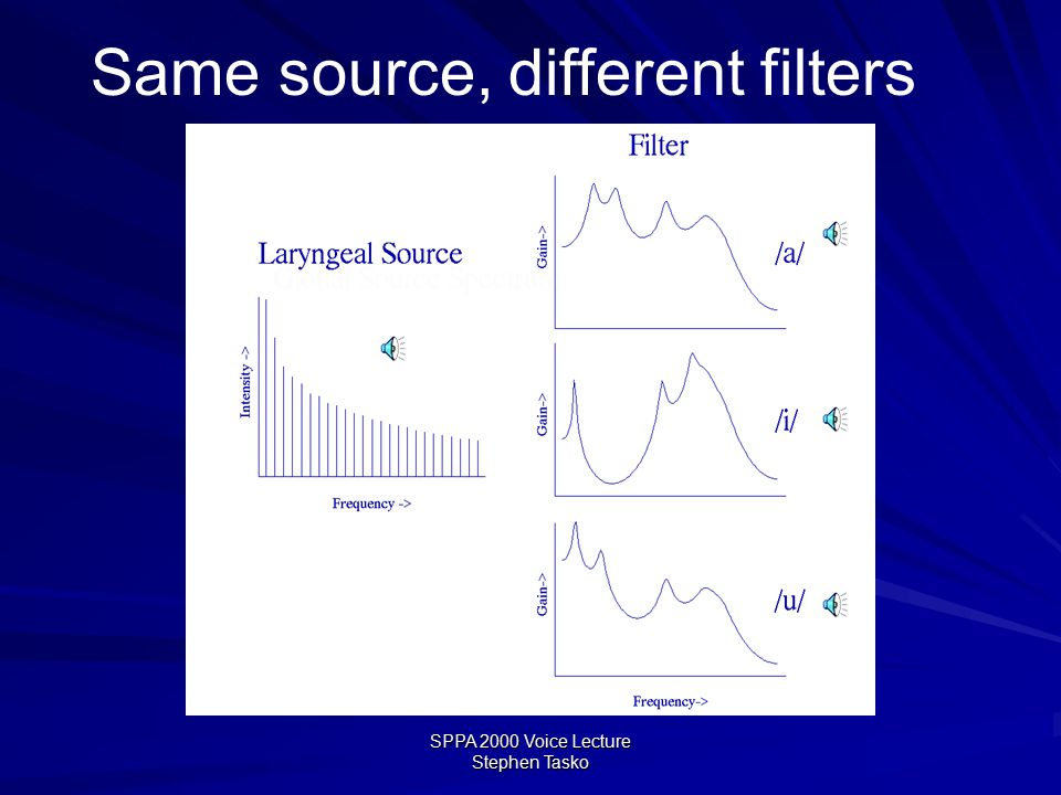 SPPA 2000 Voice Lecture Stephen Tasko Source-filter theory simplified