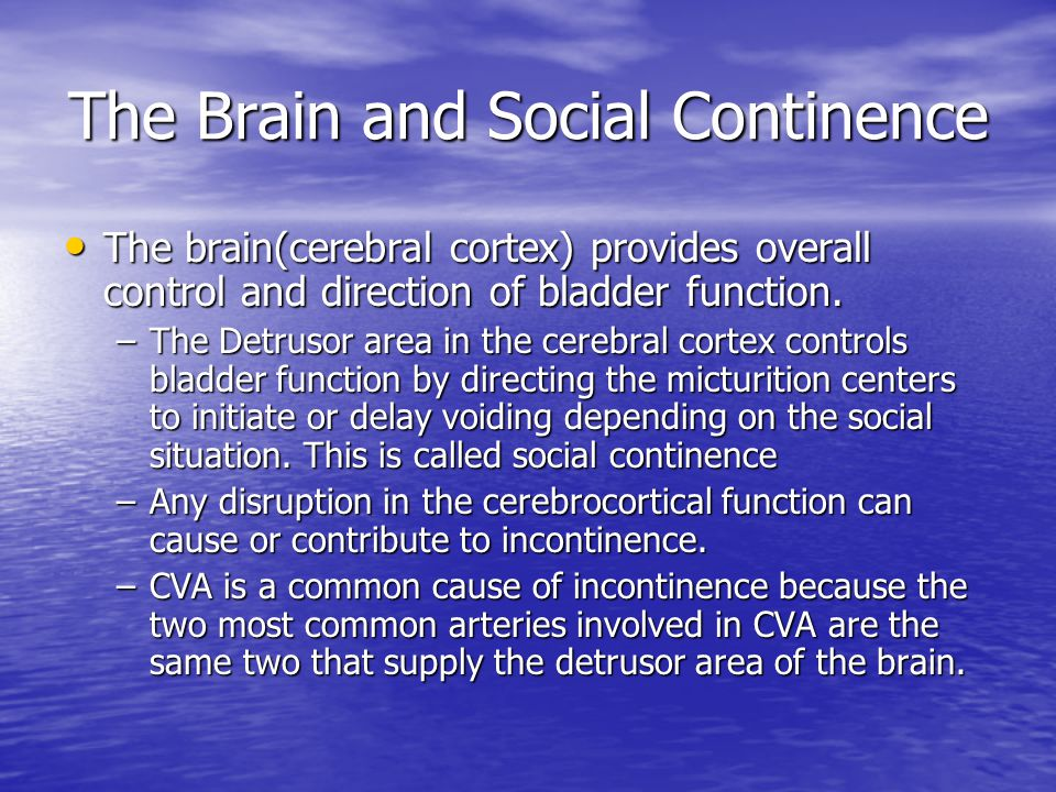 Functional Incontinence Diagnosis: Usually one of elimination.