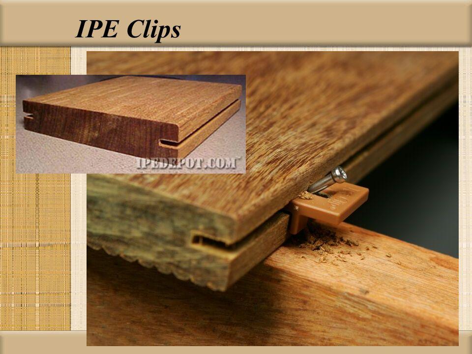 IPE Clips