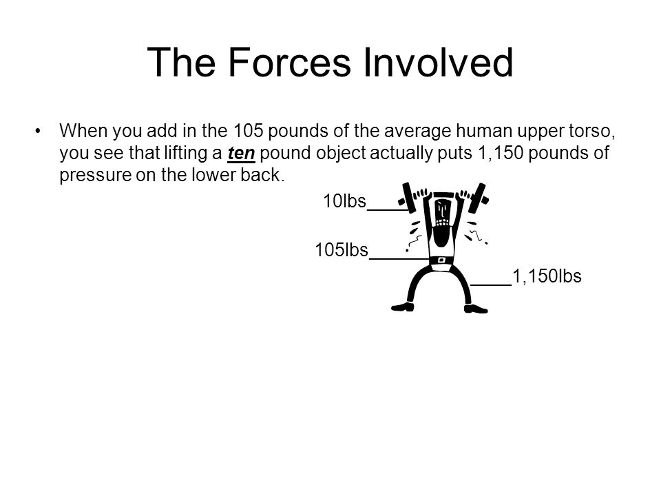The Forces Involved When you add in the 105 pounds of the average human upper torso, you see that lifting a ten pound object actually puts 1,150 pound