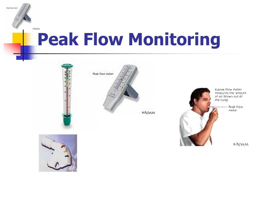 Peak Flow Monitoring