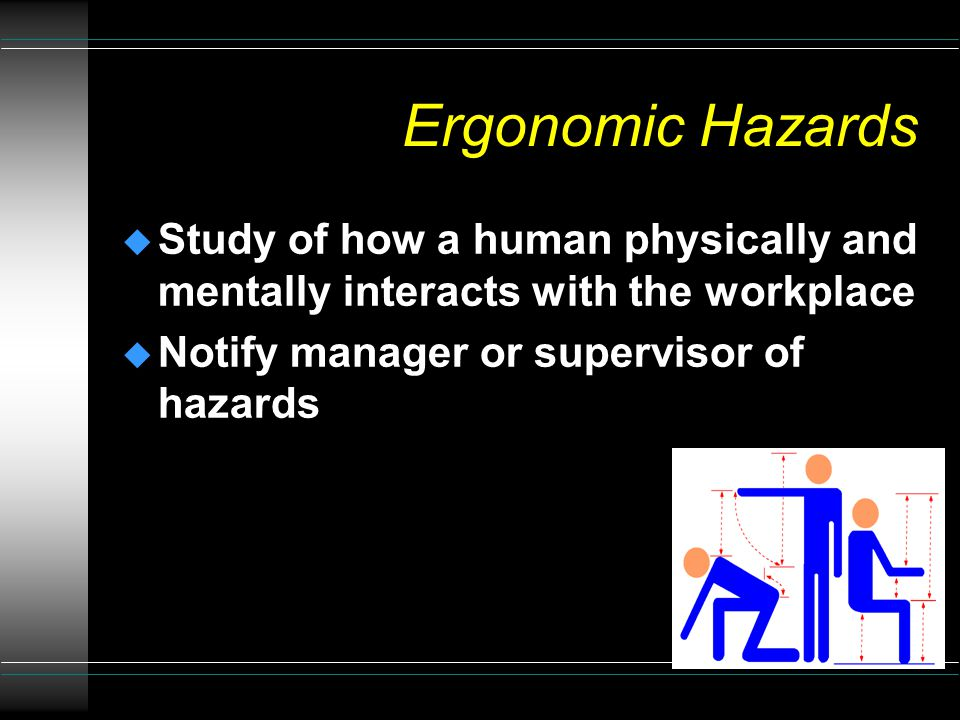 Biological Hazards u Ticks u Bees and Wasps u Spiders and Scorpions u Snakes u Rabid Animals