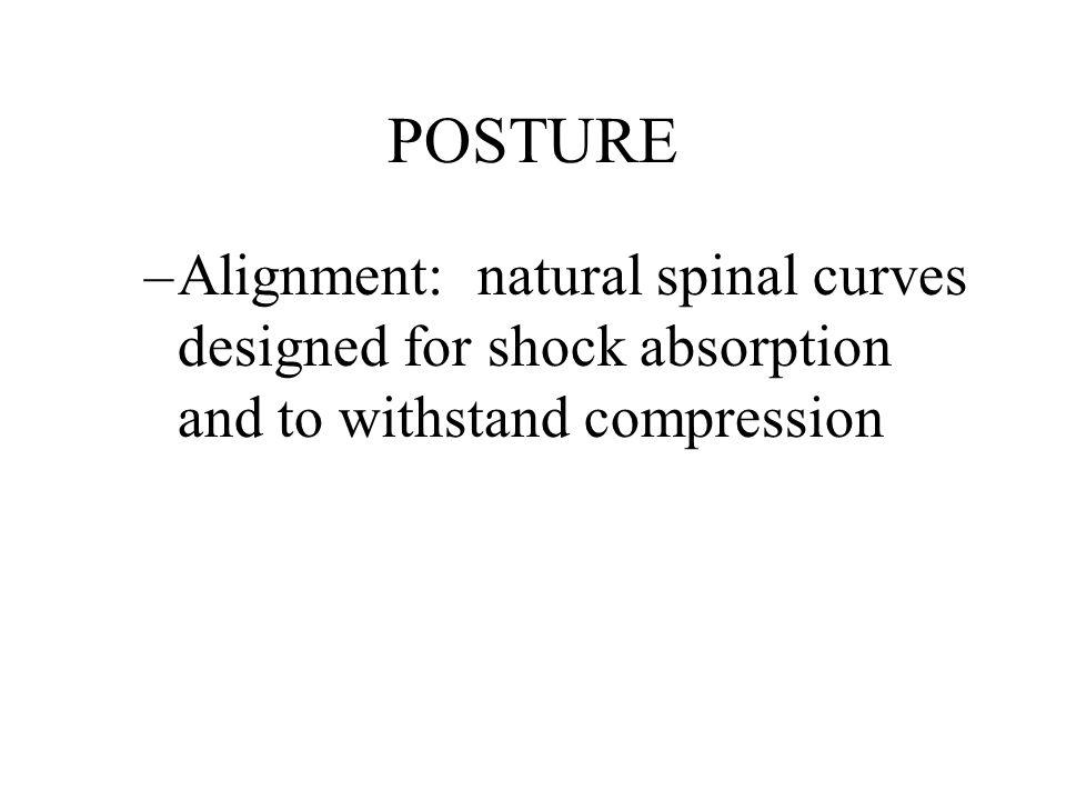 POSTURE Ideal (plumb line) vs.