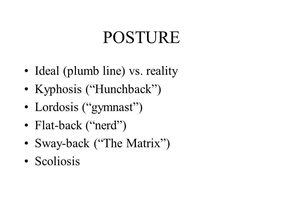"POSTURE Ideal (plumb line) vs. reality Kyphosis (""Hunchback"") Lordosis (""gymnast"") Flat-back (""nerd"") Sway-back (""The Matrix"") Scoliosis"