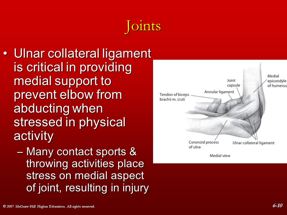 © 2007 McGraw-Hill Higher Education. All rights reserved. 6-10 Joints Ulnar collateral ligament is critical in providing medial support to prevent elb