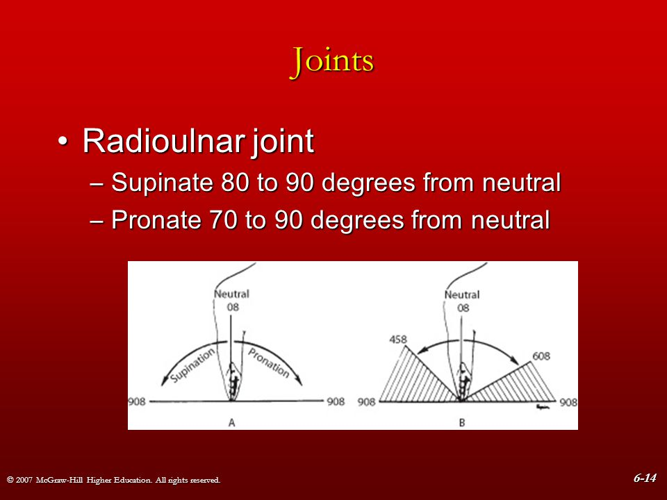 © 2007 McGraw-Hill Higher Education. All rights reserved. 6-14 Joints Radioulnar jointRadioulnar joint –Supinate 80 to 90 degrees from neutral –Pronat
