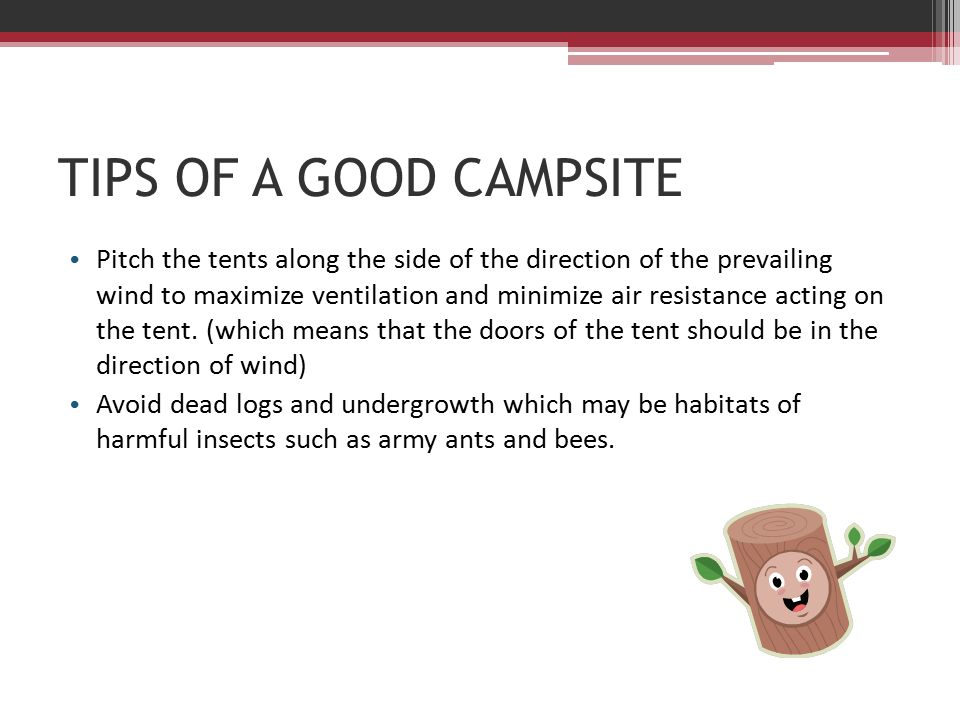 19 TIPS OF A GOOD CAMPSITE Pitch the tents ...  sc 1 st  SlidePlayer & TENT-PITCHING THEORY. PURPOSE Camping is one of the regular ...