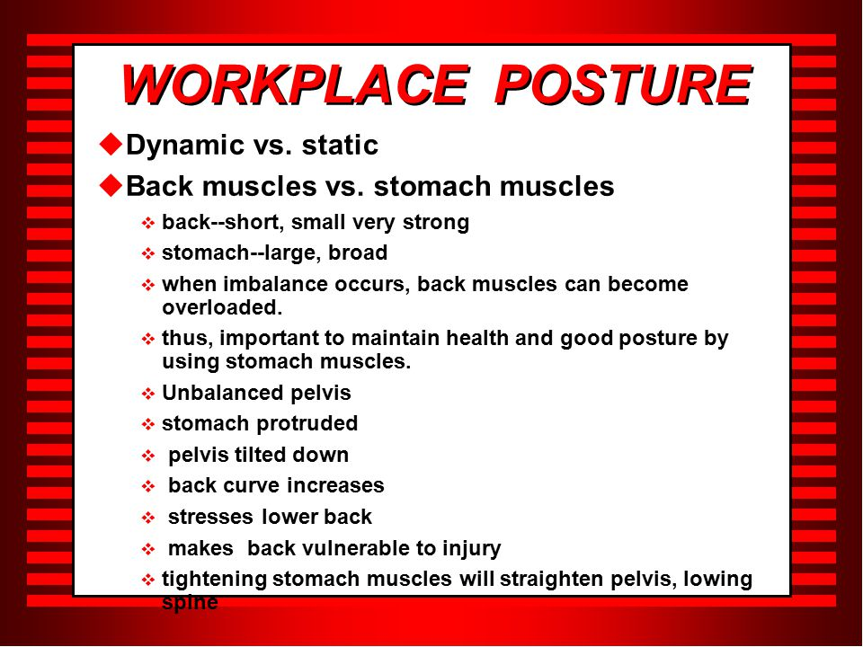 WORKPLACE POSTURE  Dynamic vs. static  Back muscles vs.