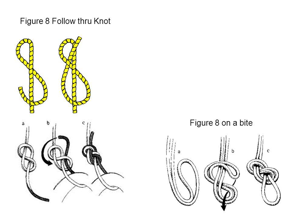 Figure 8 Follow thru Knot Figure 8 on a bite