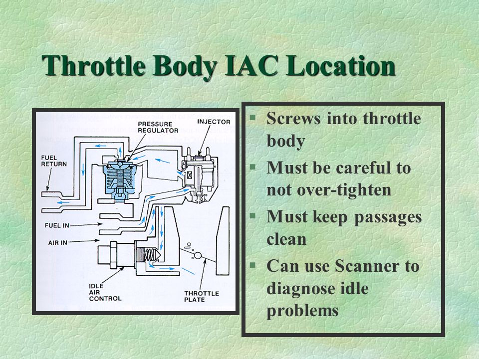 Throttle Body IAC Location §Screws into throttle body §Must be careful to not over-tighten §Must keep passages clean §Can use Scanner to diagnose idle problems