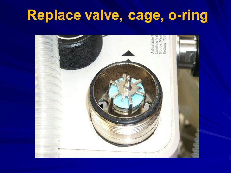 Replace valve, cage, o-ring