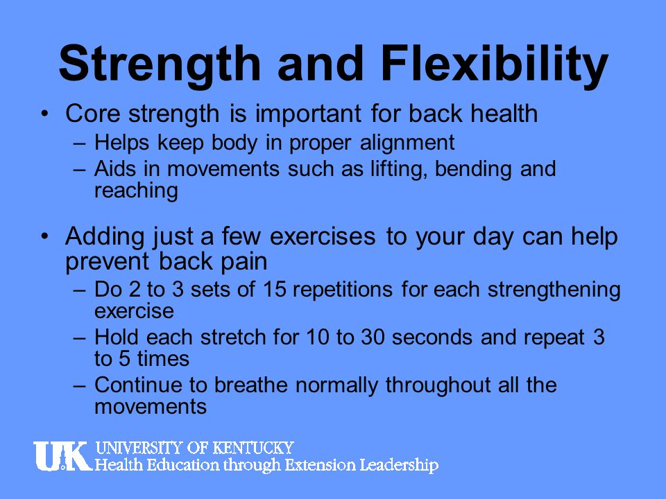 Strength and Flexibility Core strength is important for back health –Helps keep body in proper alignment –Aids in movements such as lifting, bending a