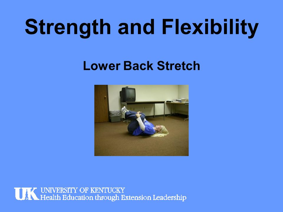 Strength and Flexibility Cat Stretch (for lower back)