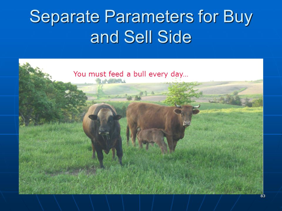 Separate Parameters for Buy and Sell Side 83 You must feed a bull every day…