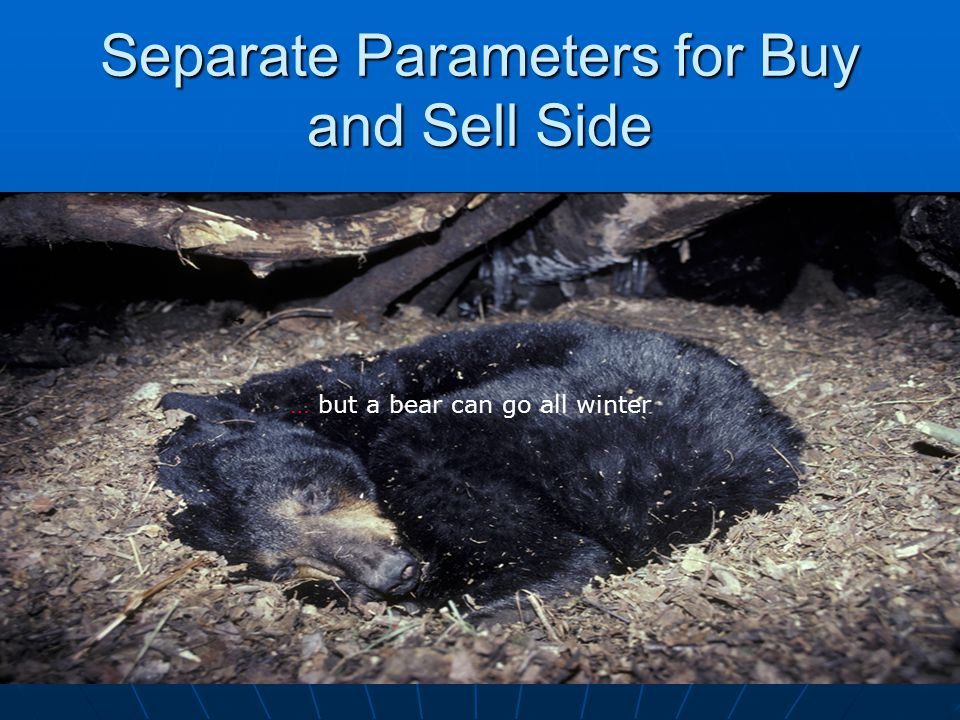 Separate Parameters for Buy and Sell Side 84 … but a bear can go all winter