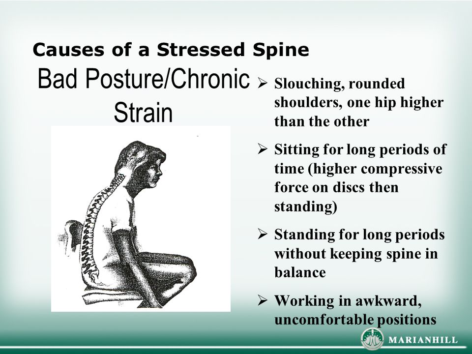 Bad Posture/Chronic Strain  Slouching, rounded shoulders, one hip higher than the other  Sitting for long periods of time (higher compressive force on discs then standing)  Standing for long periods without keeping spine in balance  Working in awkward, uncomfortable positions Causes of a Stressed Spine