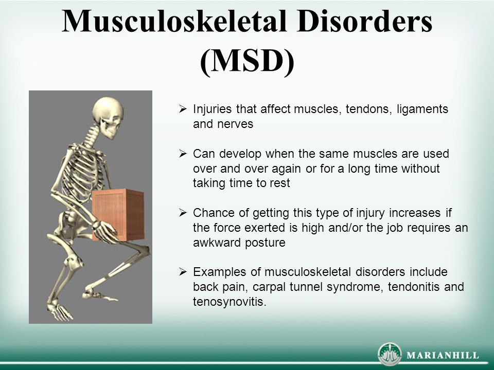 Musculoskeletal Disorders (MSD)  Injuries that affect muscles, tendons, ligaments and nerves  Can develop when the same muscles are used over and ov