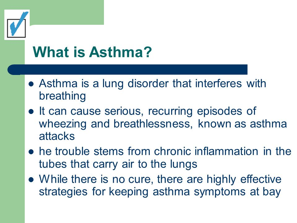 Asthma Triggers: Pets Pet allergies are another common asthma trigger The problem is dander dead skin cells that collect on clothing, furniture, and walls When pet dander is inhaled, it can cause an asthma attack in as little as 15 minutes People with cat allergies react to a protein in the cat s saliva, skin, and urine This protein accumulates in the air or on surfaces and can trigger asthma attacks in 20% to 30% of people with asthma.