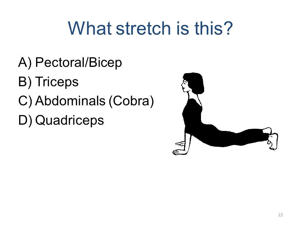 Quadricep Stretch 1-2 21