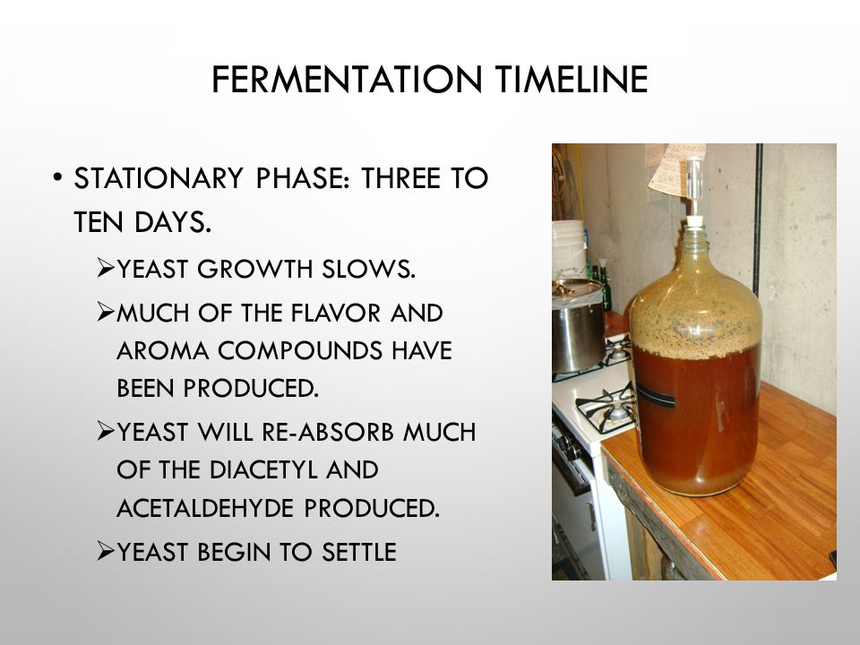 STEP 3 ON DAY 3 OR WHEN YEAST ACTIVITY IS VISIBLE IN THE JAR/FLASK, POUR THE CONTENTS INTO A LARGER JAR OR FLASK WITH ENOUGH STERILIZED WORT TO MAKE A 1-3 LITER STARTER.