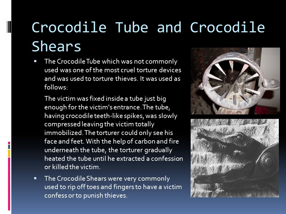Crocodile Tube and Crocodile Shears  The Crocodile Tube which was not commonly used was one of the most cruel torture devices and was used to torture thieves.