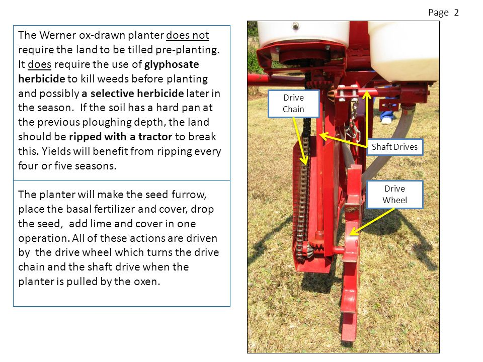 The Werner ox-drawn planter does not require the land to be tilled pre-planting.