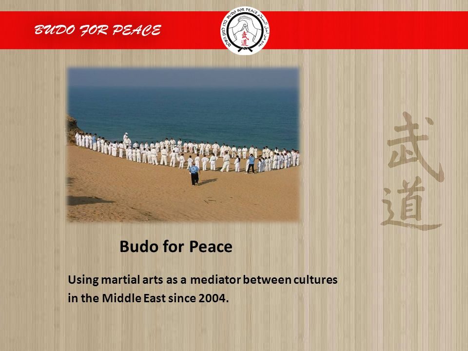 Budo for Peace Using martial arts as a mediator between cultures in the Middle East since 2004.