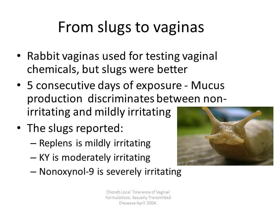 From slugs to vaginas Rabbit vaginas used for testing vaginal chemicals, but slugs were better 5 consecutive days of exposure - Mucus production discriminates between non- irritating and mildly irritating The slugs reported: – Replens is mildly irritating – KY is moderately irritating – Nonoxynol-9 is severely irritating Dhondt.Local Tolerance of Vaginal Formulations.